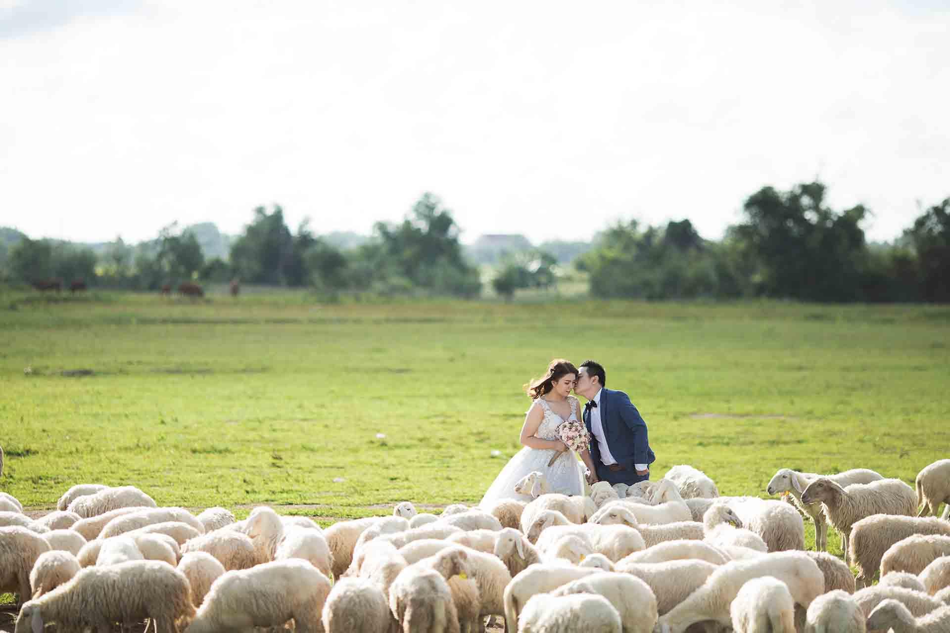 filmowanie wesel krakow